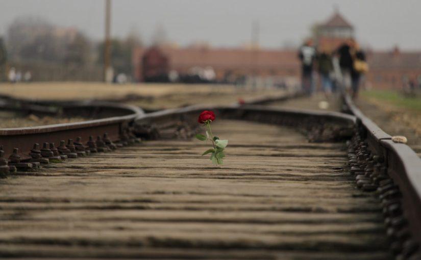 Herdenking Auschwitz 70 jaar na de bevrijding